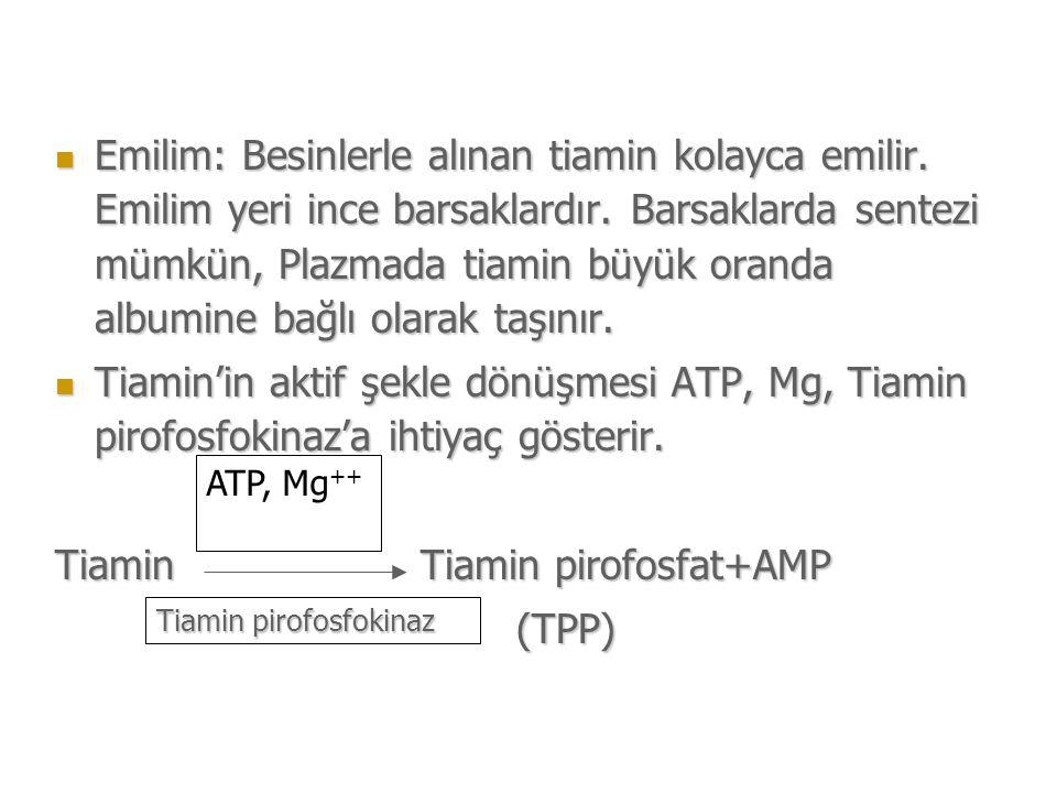 Tiamin Tiamin pirofosfat+AMP (TPP)