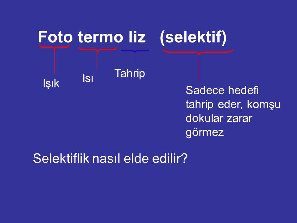Foto termo liz (selektif)