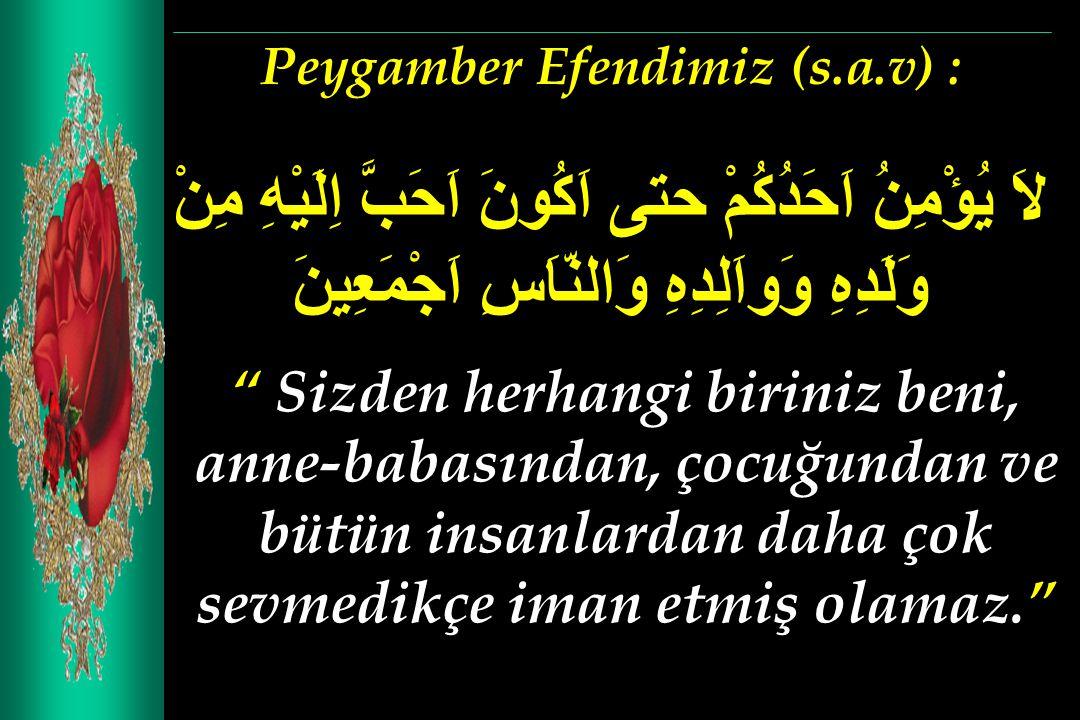 Peygamber Efendimiz (s.a.v) :