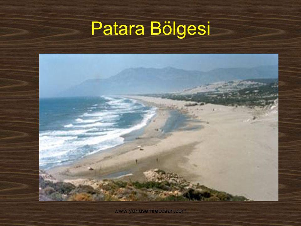 Patara Bölgesi www.yunusemrecosan.com