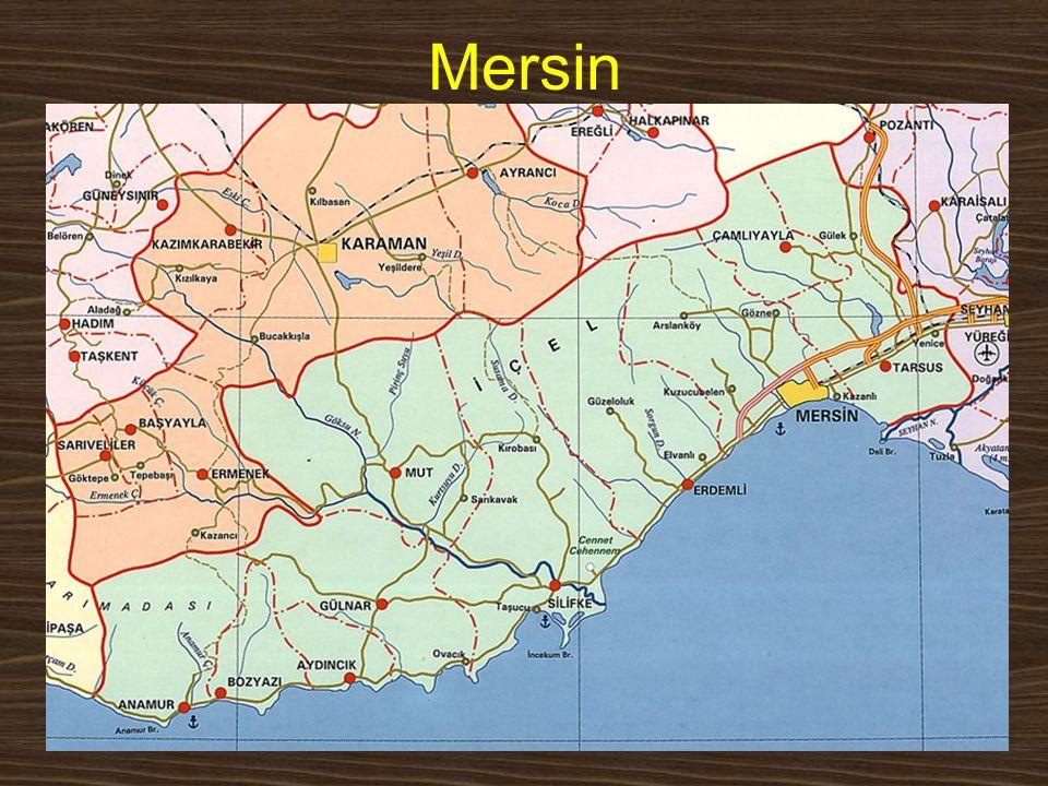 Mersin www.yunusemrecosan.com