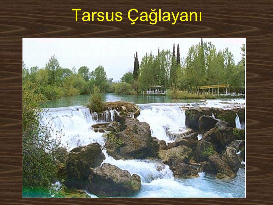 Tarsus Çağlayanı www.yunusemrecosan.com