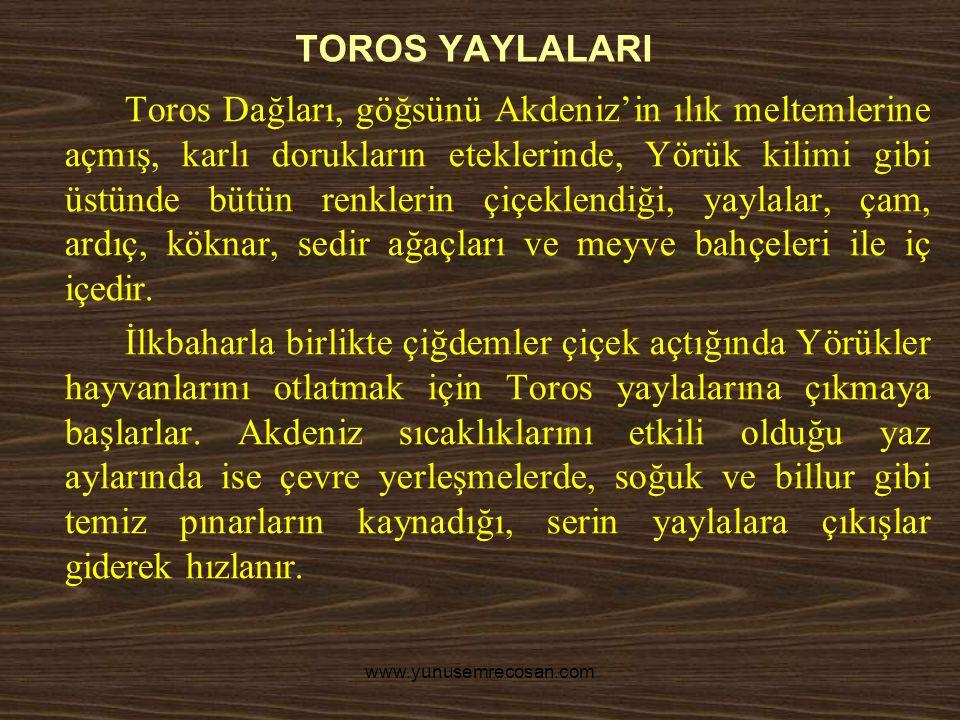 TOROS YAYLALARI