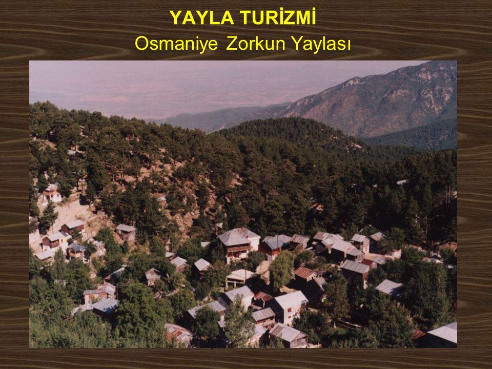 YAYLA TURİZMİ Osmaniye Zorkun Yaylası