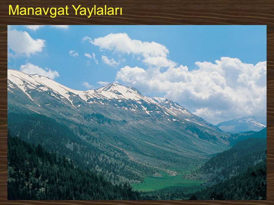 Manavgat Yaylaları www.yunusemrecosan.com