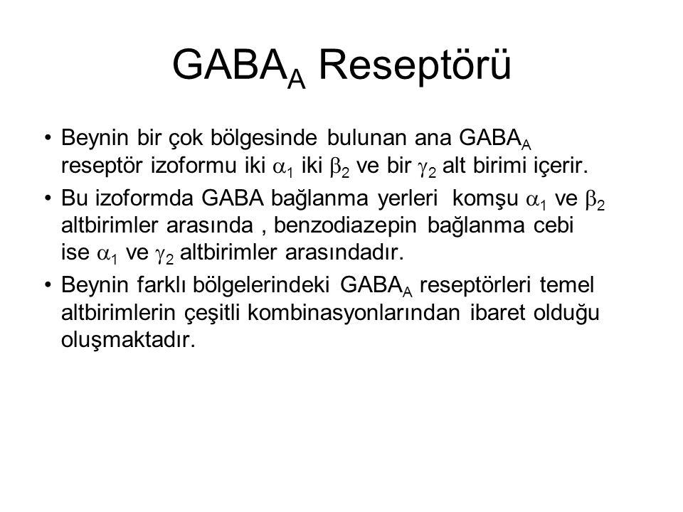 GABAA Reseptörü Beynin bir çok bölgesinde bulunan ana GABAA reseptör izoformu iki a1 iki b2 ve bir g2 alt birimi içerir.