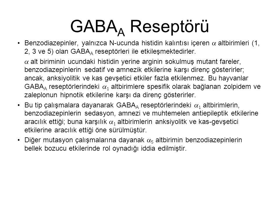 GABAA Reseptörü