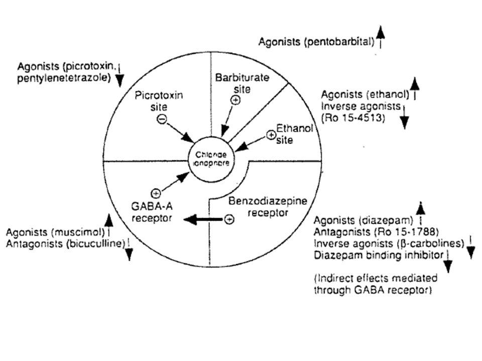Figure 2.12. Diagrammatic representation of the GABA-benzodiazepine supramolecular