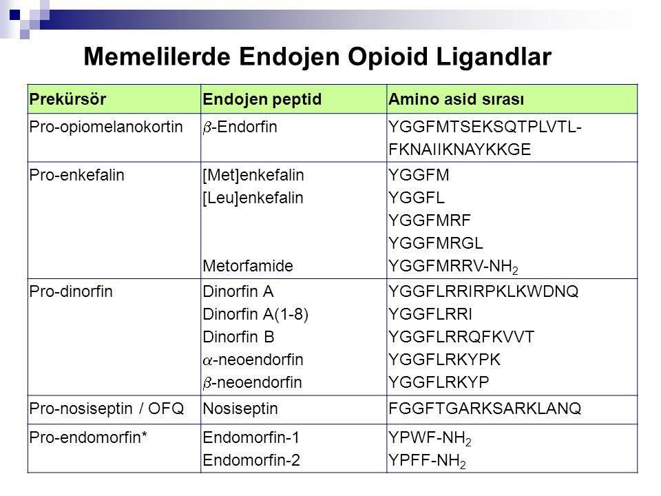 Memelilerde Endojen Opioid Ligandlar