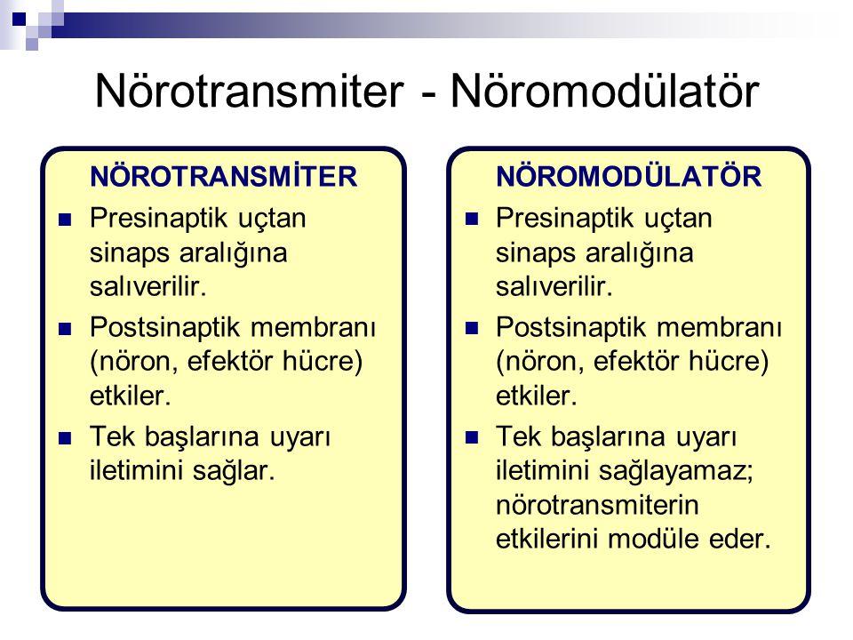 Nörotransmiter - Nöromodülatör