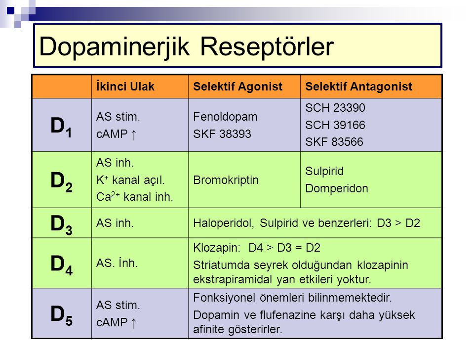 Dopaminerjik Reseptörler