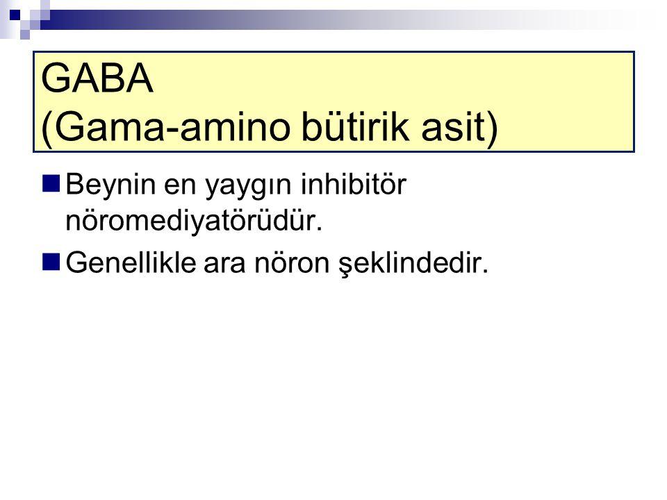 GABA (Gama-amino bütirik asit)