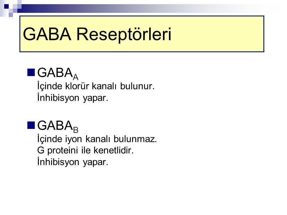 GABA Reseptörleri GABAA İçinde klorür kanalı bulunur. İnhibisyon yapar.