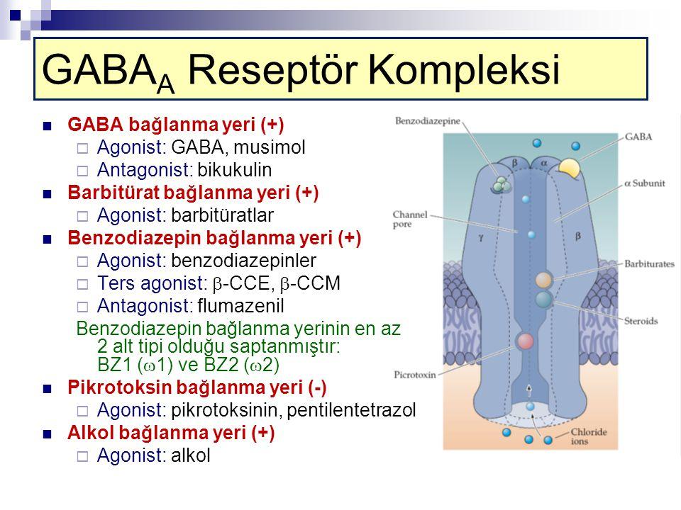 GABAA Reseptör Kompleksi