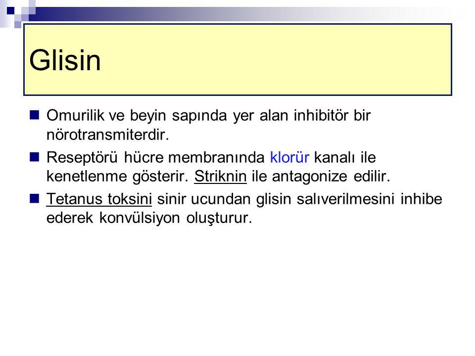 Glisin Omurilik ve beyin sapında yer alan inhibitör bir nörotransmiterdir.