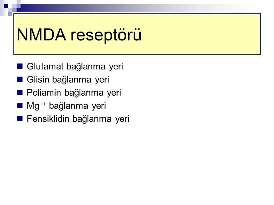 NMDA reseptörü Glutamat bağlanma yeri Glisin bağlanma yeri
