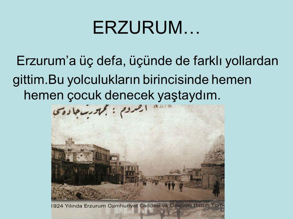 ERZURUM… Erzurum'a üç defa, üçünde de farklı yollardan