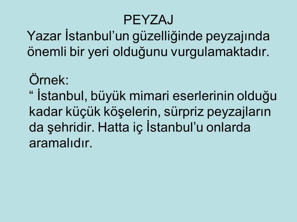 PEYZAJ Yazar İstanbul'un güzelliğinde peyzajında önemli bir yeri olduğunu vurgulamaktadır.