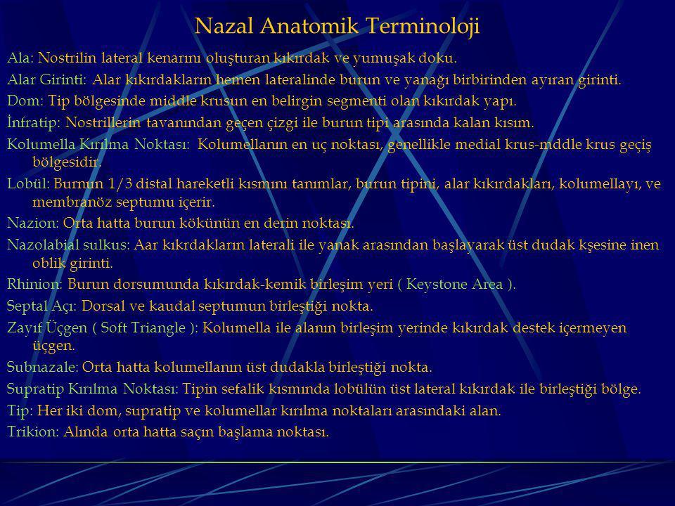 Nazal Anatomik Terminoloji