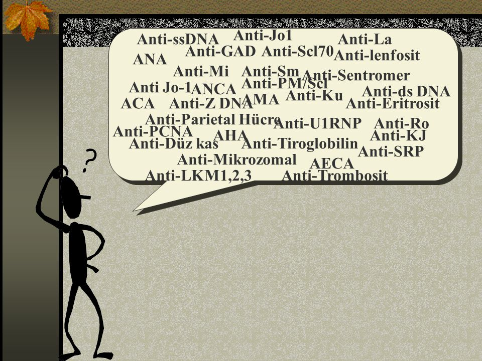 Anti-Jo1 Anti-ssDNA. Anti-La. Anti-GAD. Anti-Scl70. Anti-lenfosit. ANA. Anti-Mi. Anti-Sm. Anti-Sentromer.