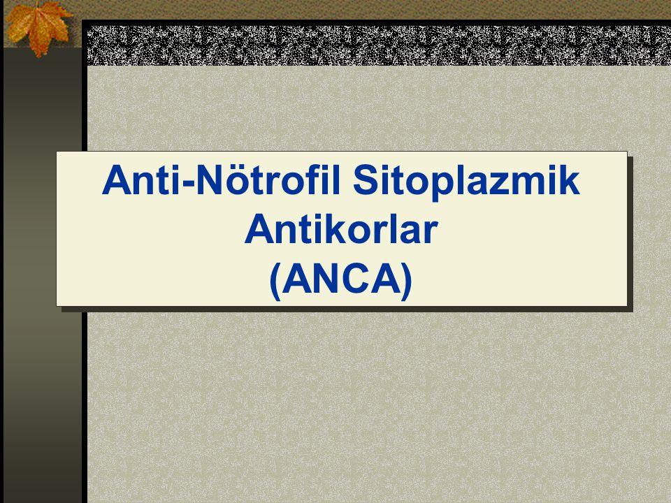 Anti-Nötrofil Sitoplazmik