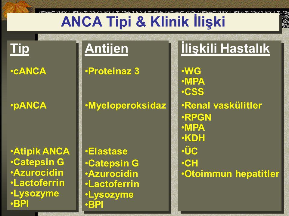 ANCA Tipi & Klinik İlişki