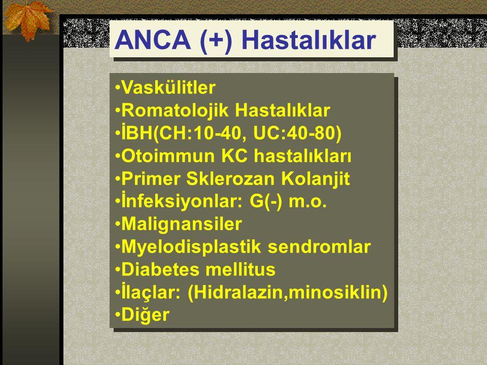 ANCA (+) Hastalıklar Vaskülitler Romatolojik Hastalıklar