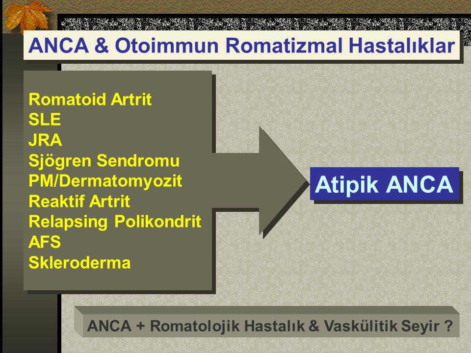 Atipik ANCA ANCA & Otoimmun Romatizmal Hastalıklar Romatoid Artrit SLE
