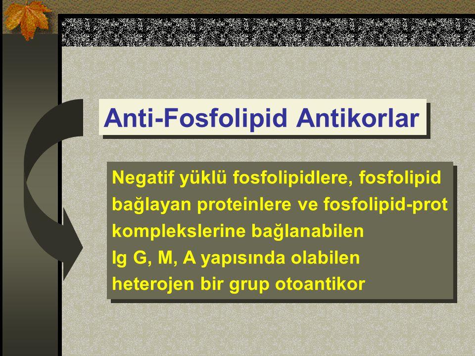 Anti-Fosfolipid Antikorlar