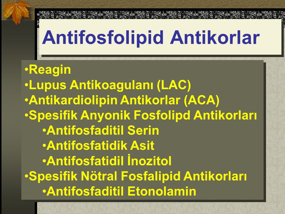 Antifosfolipid Antikorlar