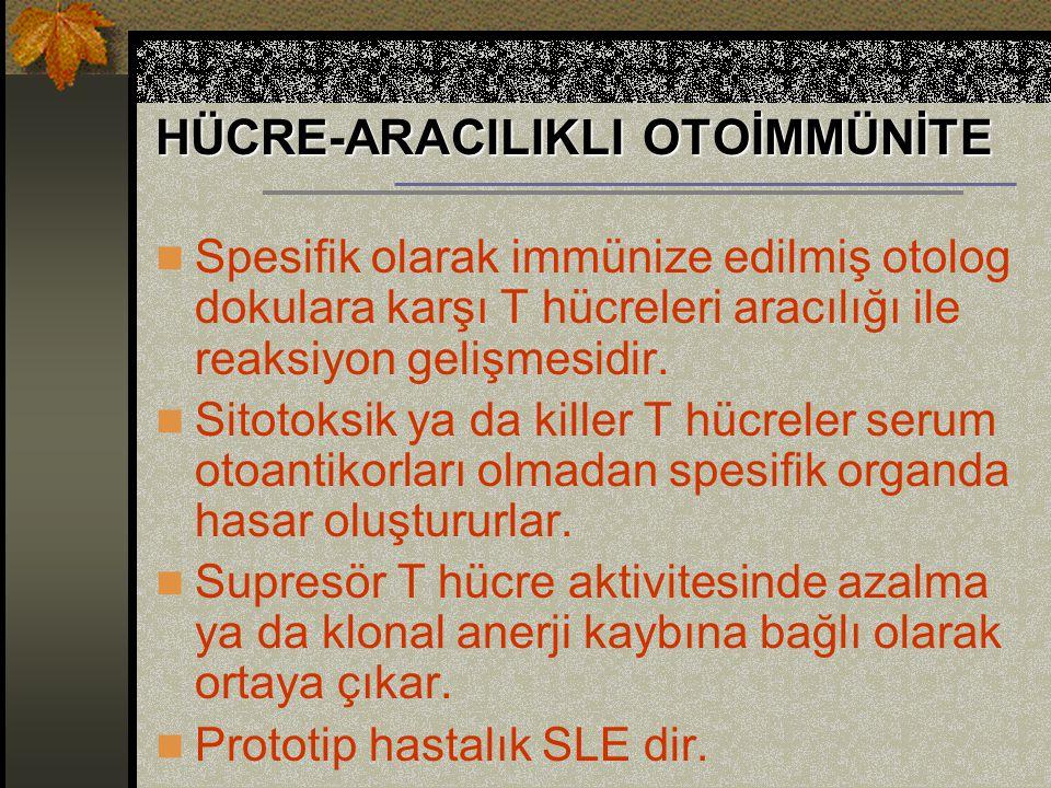 HÜCRE-ARACILIKLI OTOİMMÜNİTE