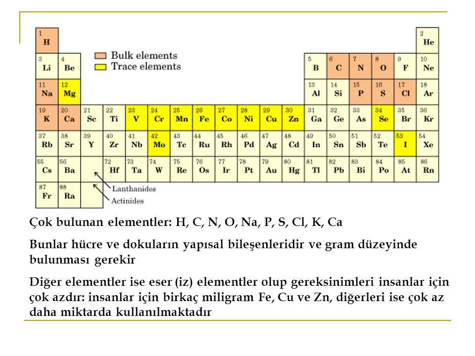 Çok bulunan elementler: H, C, N, O, Na, P, S, Cl, K, Ca