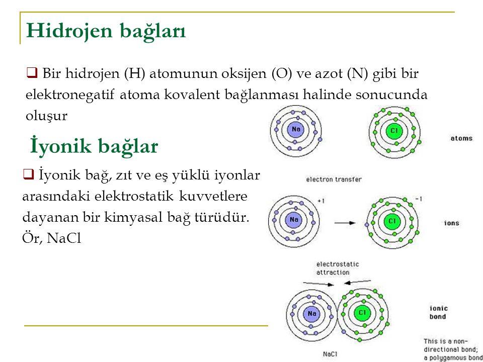 Hidrojen bağları İyonik bağlar