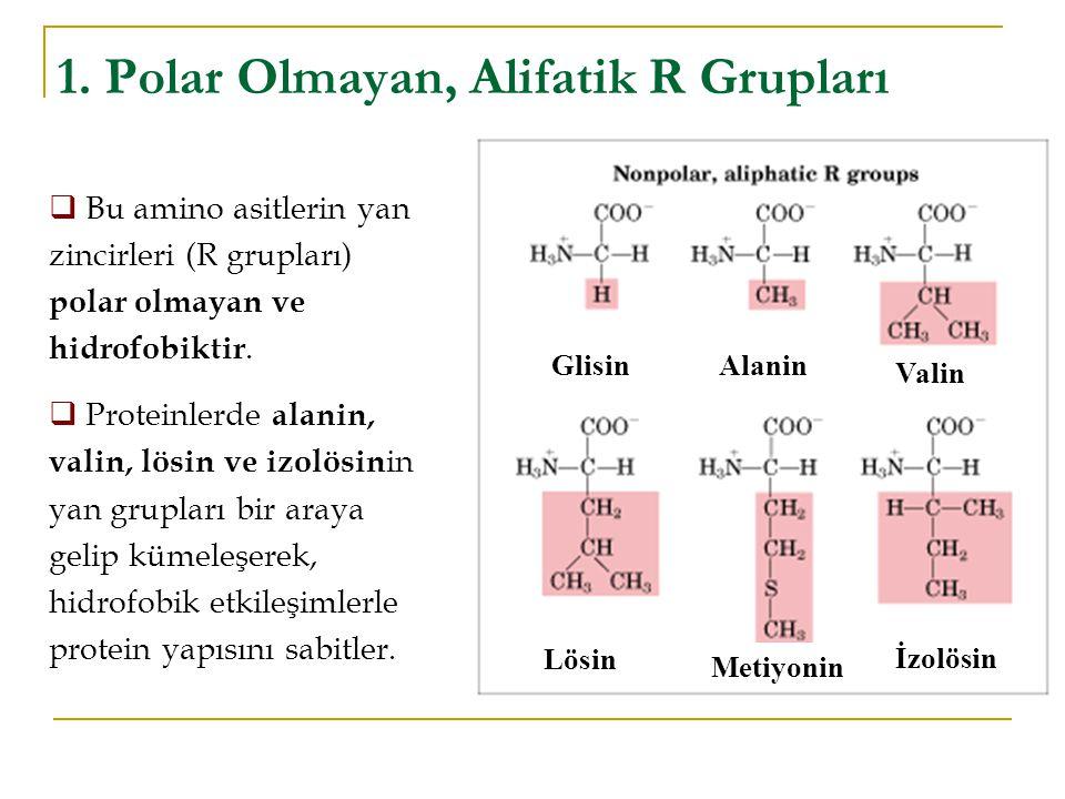 1. Polar Olmayan, Alifatik R Grupları