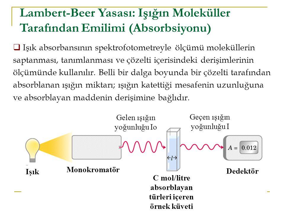 C mol/litre absorblayan türleri içeren örnek küveti