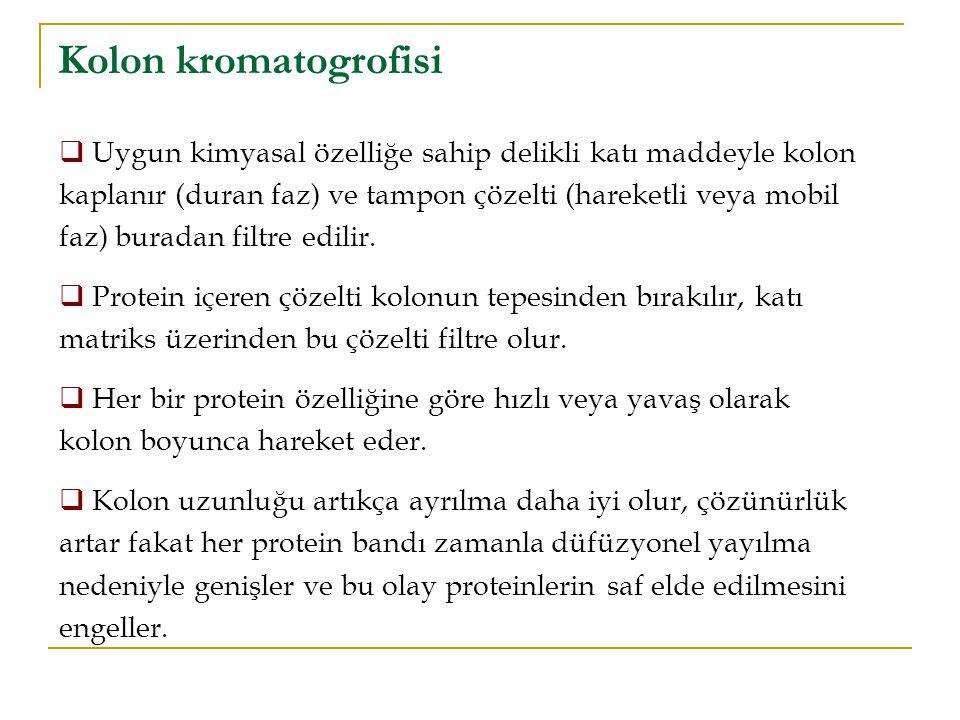 Kolon kromatogrofisi