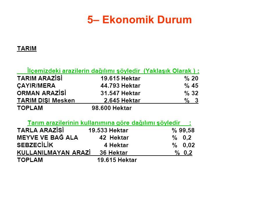 5– Ekonomik Durum TARIM. İlçemizdeki arazilerin dağılımı şöyledir (Yaklaşık Olarak ) : TARIM ARAZİSİ 19.615 Hektar % 20.