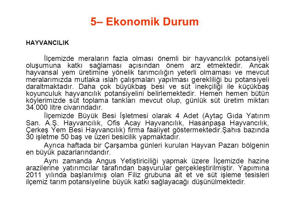 5– Ekonomik Durum HAYVANCILIK.