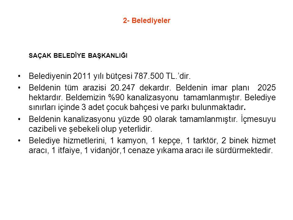 Belediyenin 2011 yılı bütçesi 787.500 TL.'dir.