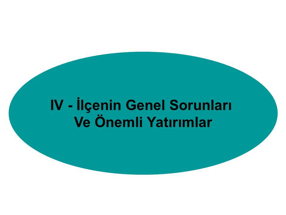 IV - İlçenin Genel Sorunları