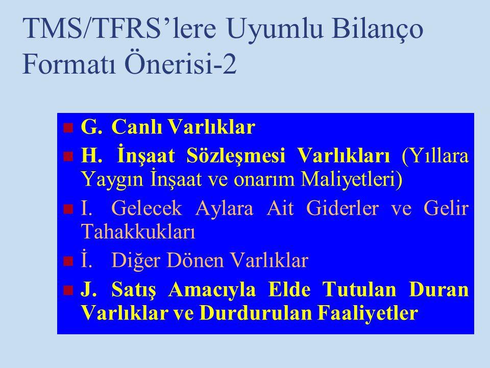 TMS/TFRS'lere Uyumlu Bilanço Formatı Önerisi-2