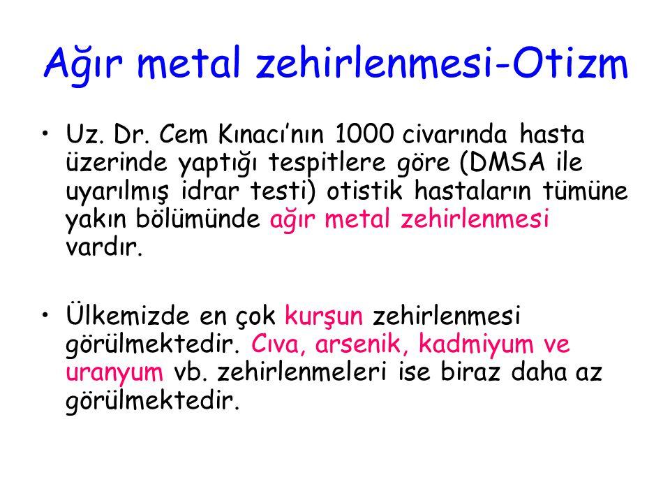 Ağır metal zehirlenmesi-Otizm