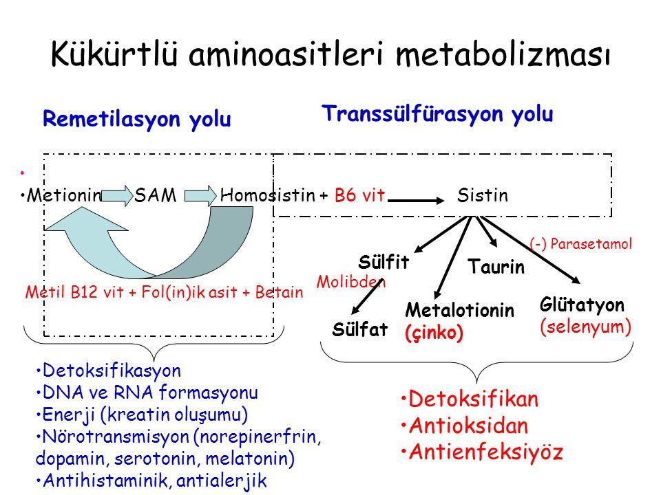 Kükürtlü aminoasitleri metabolizması