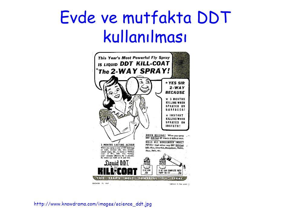 Evde ve mutfakta DDT kullanılması