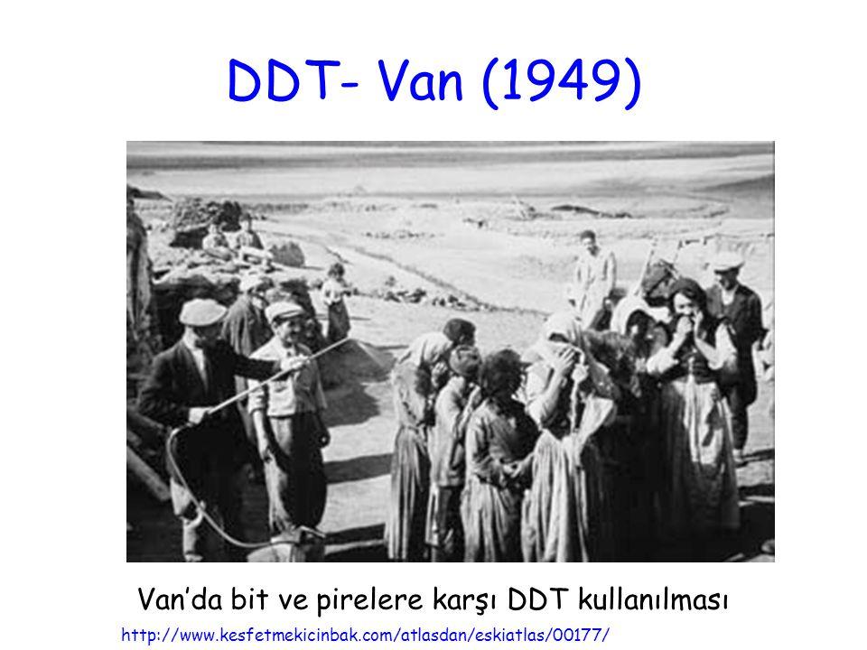 Van'da bit ve pirelere karşı DDT kullanılması