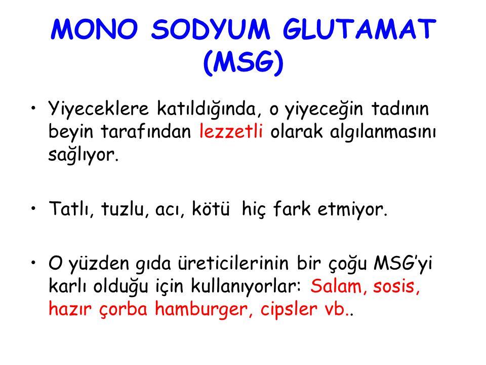 MONO SODYUM GLUTAMAT (MSG)