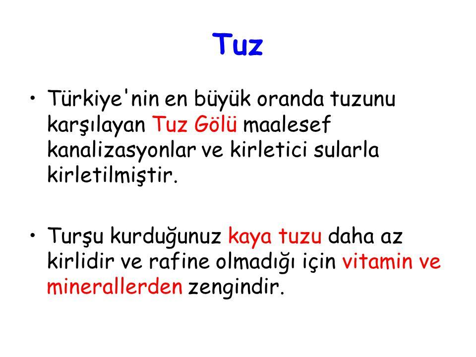 Tuz Türkiye nin en büyük oranda tuzunu karşılayan Tuz Gölü maalesef kanalizasyonlar ve kirletici sularla kirletilmiştir.