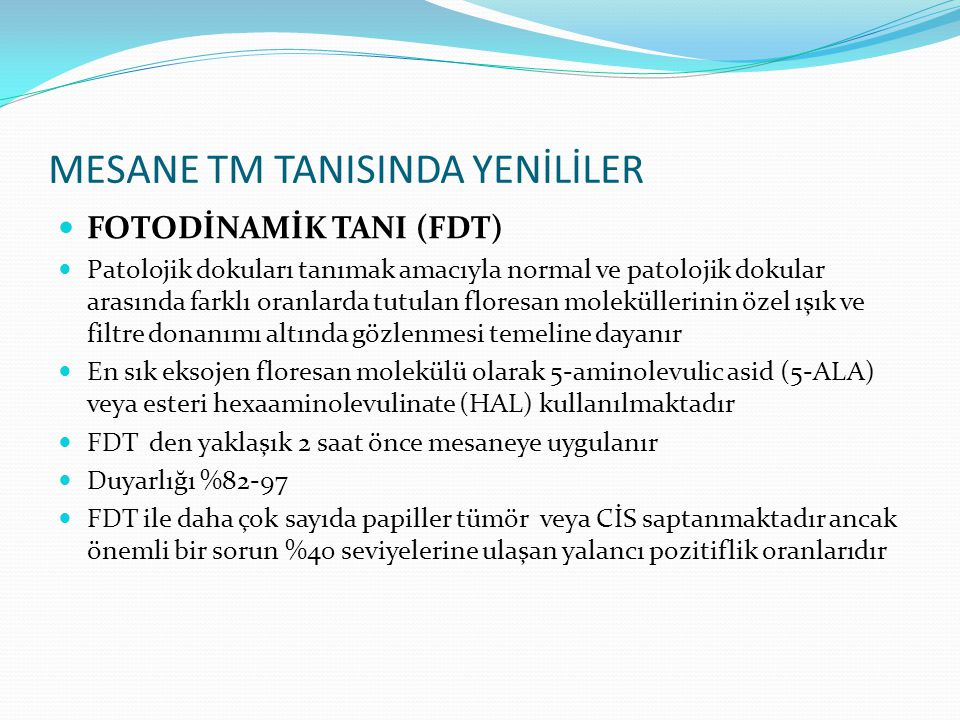 MESANE TM TANISINDA YENİLİLER