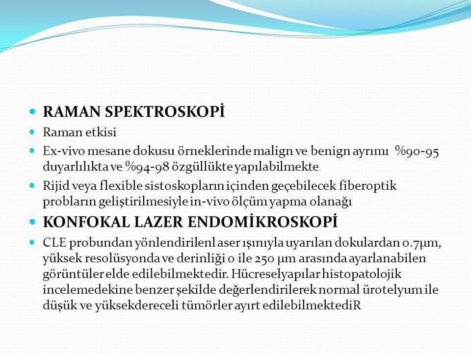 KONFOKAL LAZER ENDOMİKROSKOPİ
