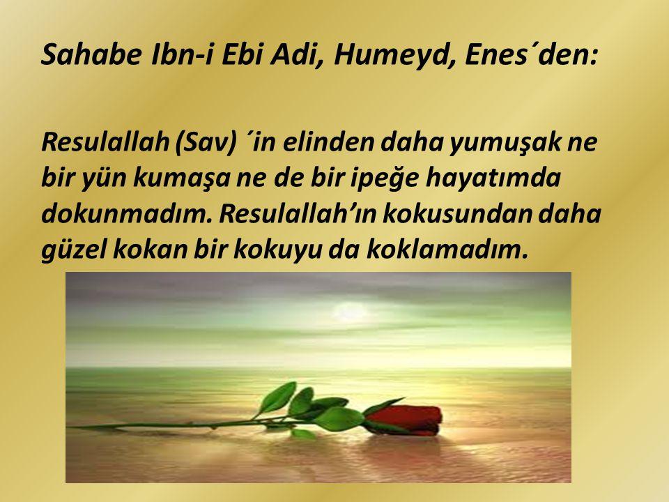 Sahabe Ibn-i Ebi Adi, Humeyd, Enes´den:
